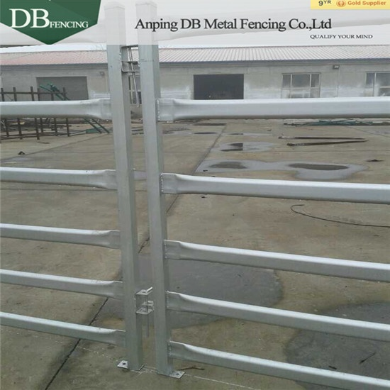 Experienced cattle panel Brisbane supplier