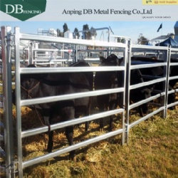 Heavy Duty Cattle Yard Panels